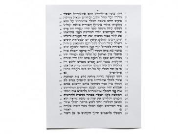Tikun Sofrim, Megillah (28 Lines)